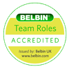 belbin-yellow